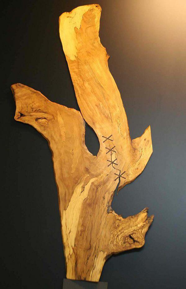 Wandbild Trüffelbuche mit einer Naht
