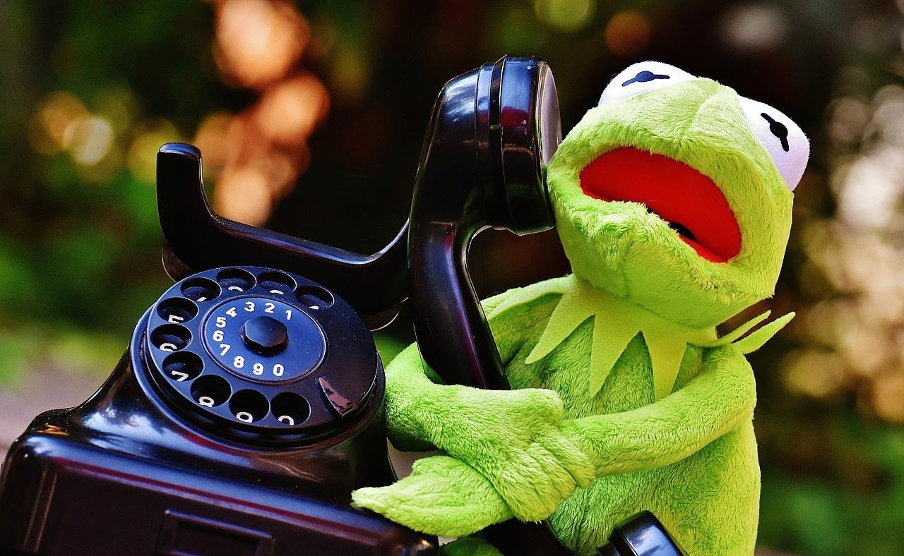 Kermit am Telefon