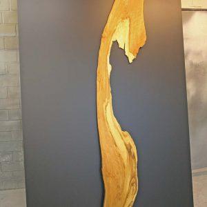 Wandbild Trüffelbuche