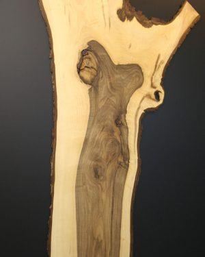 Nussbaum Wandkunst