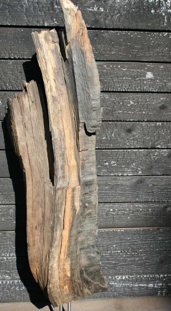 Mooreiche Holzkunst