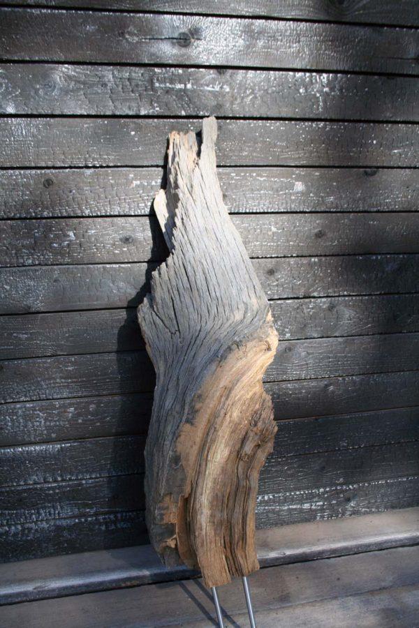 Mooreichenskulptur Kakadu