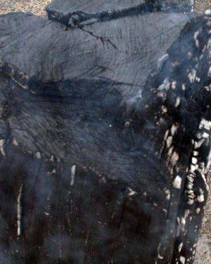 Eichendampf Nach Köhlen