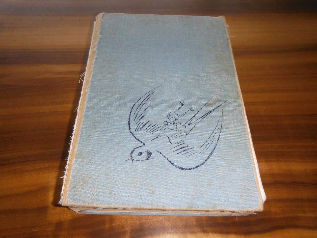 Andersen Märchenbuch